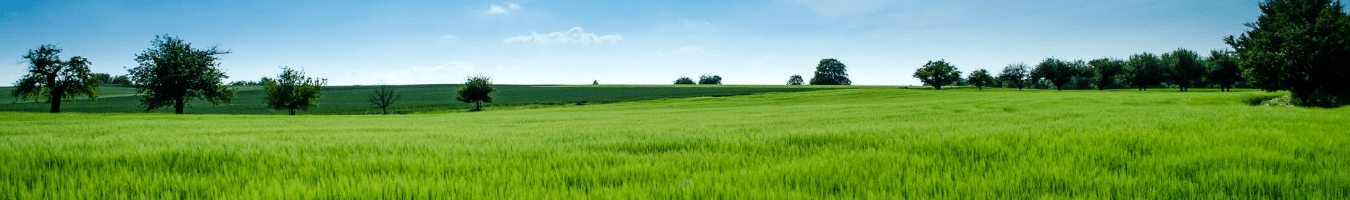 what to know about your land before building your new home
